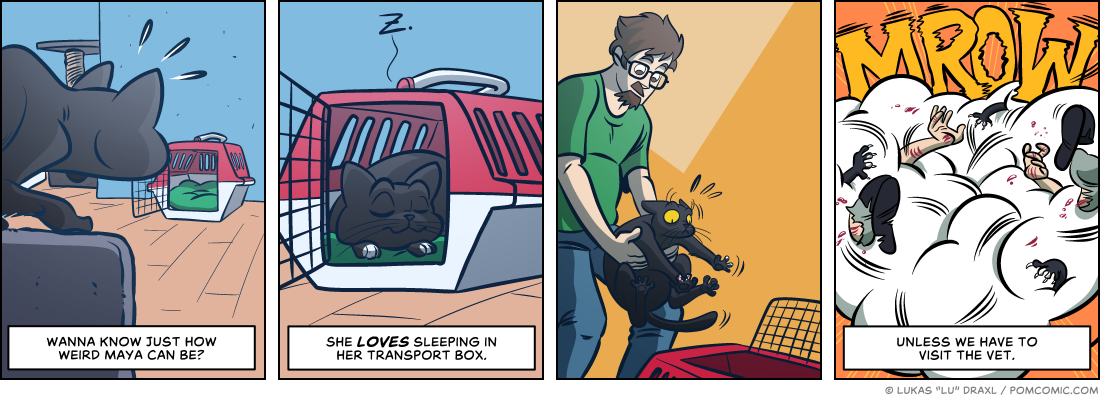 Piece of Me. A webcomic about cats in transport boxes.